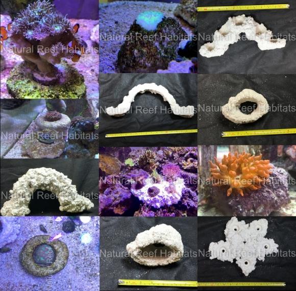Natural Reef Habitats
